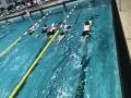 Zwemkamp46